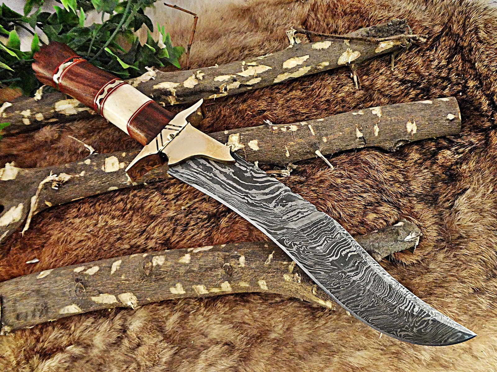15 long hunting bowie knife hand forged damascus steel red dollar wood with brass pommel. Black Bedroom Furniture Sets. Home Design Ideas